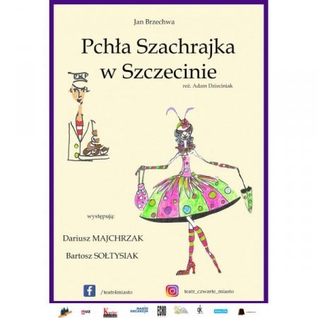 Pchła Szachrajka w Szczecinie