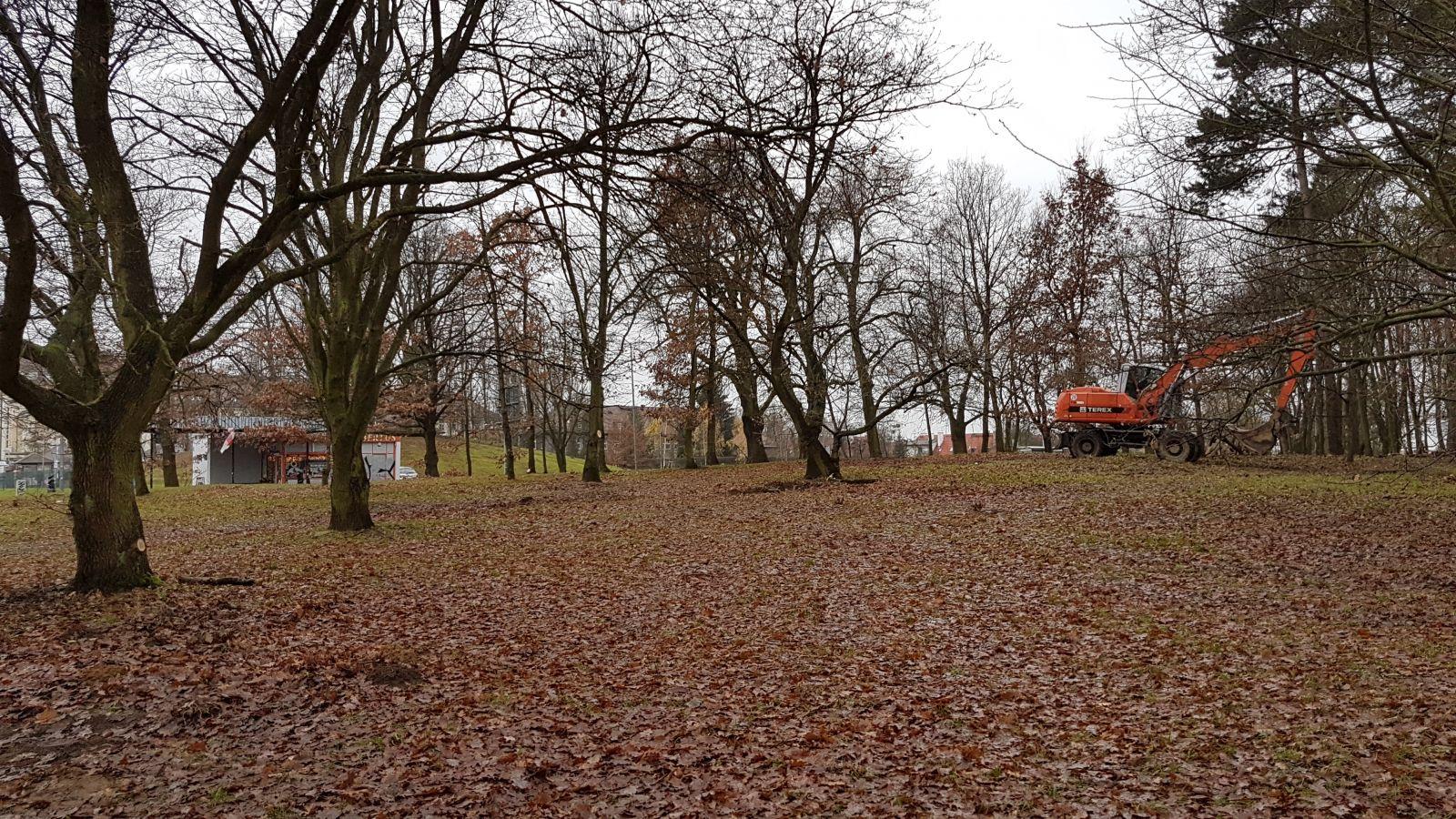 park naPogodnie