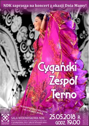 Cygański Teatr Muzyczny Terno