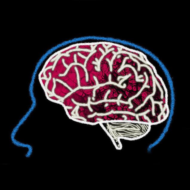 VII Międzyuczelniana Konferencja Dzień Mózgu