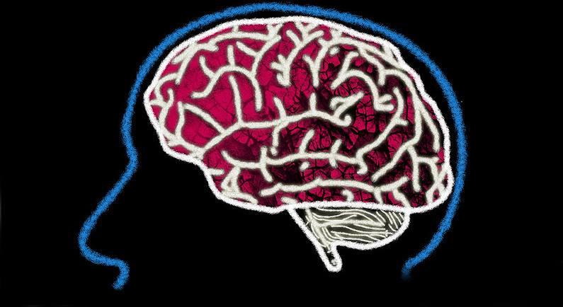 dzien_mozgu
