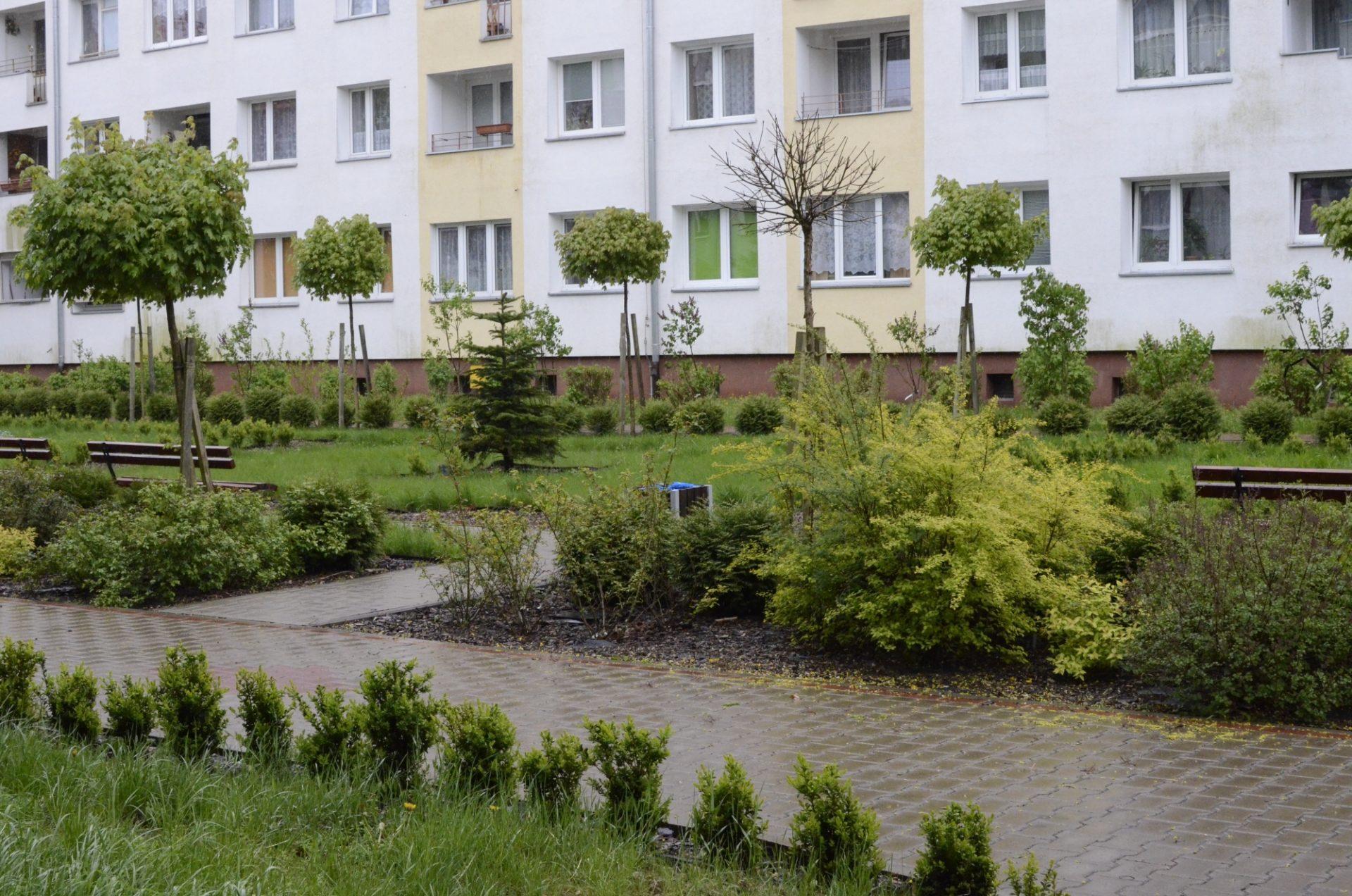 zielone podwórka iprzedogródki