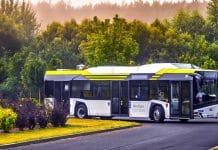 elektryczne autobusy w Szczecinie