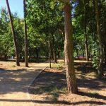 park przy ulicy Litewskiej wSzczecinie