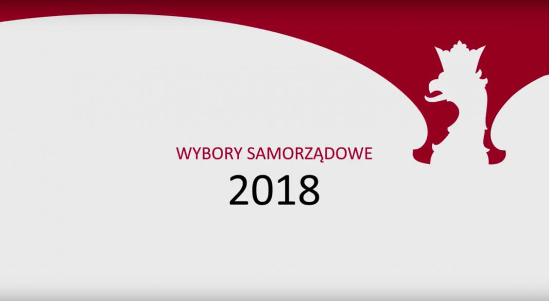 wyniki wyborów Szczecin