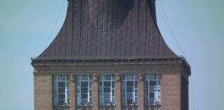 taras widokowy muzeum