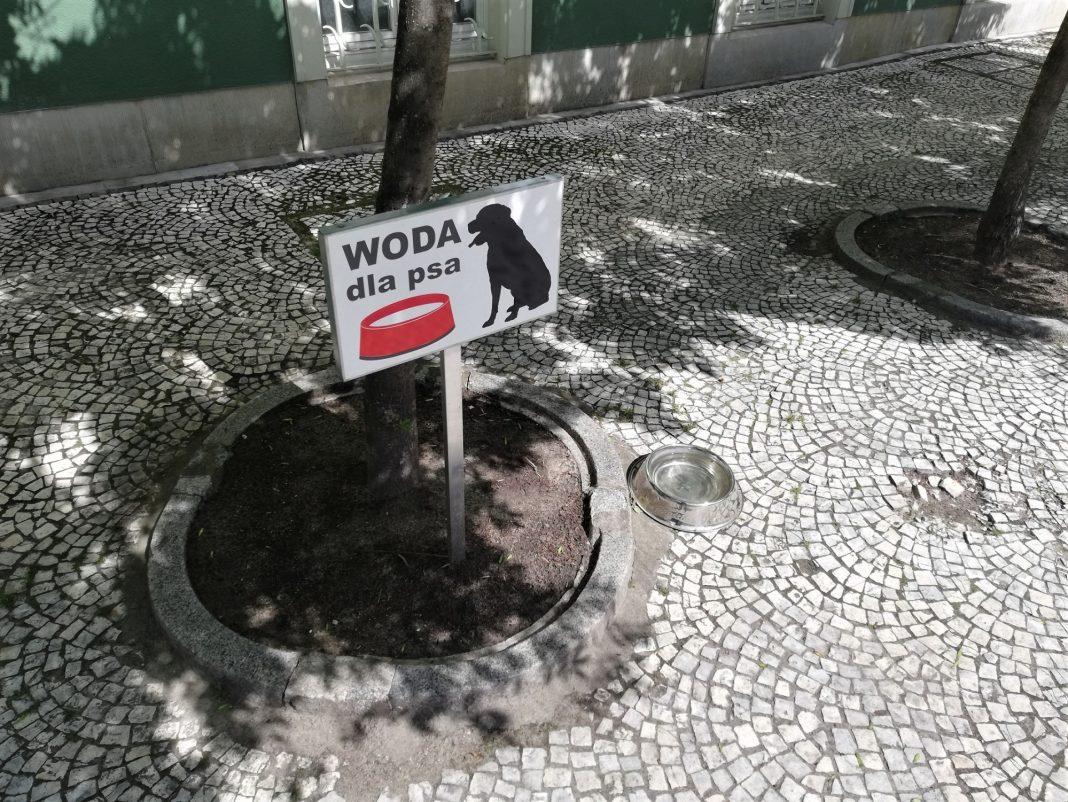 woda dla psa szczeciński magistrat