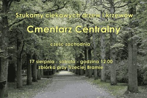 Szukamy ciekawych drzew i krzewów - Cmentarz Centralny. Część zachodnia.