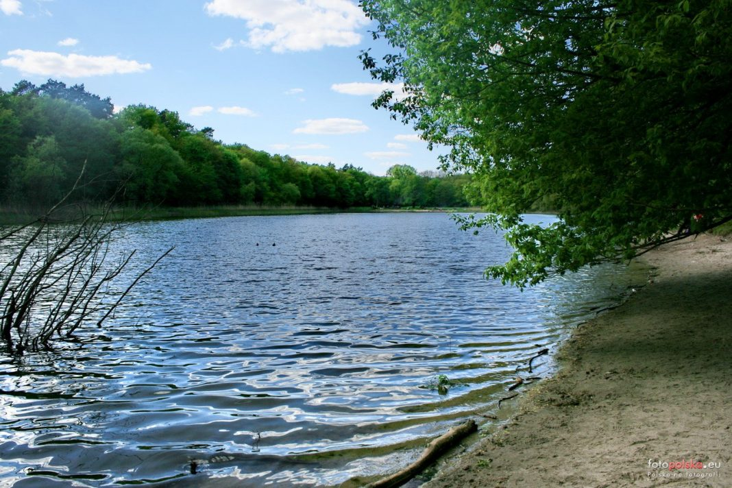 jezioro Goplany trasa SBO