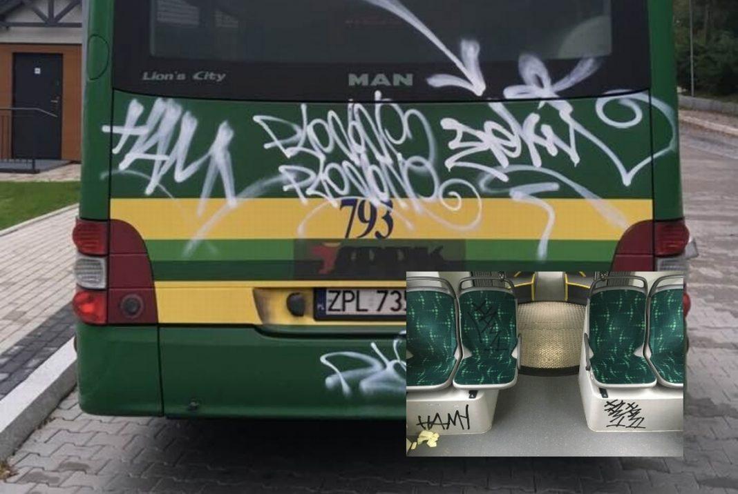 wandale autobusy SPPK