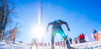 sporty zimowe zakłady bukmacherskie STS