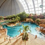 Tropical Islands konkurs
