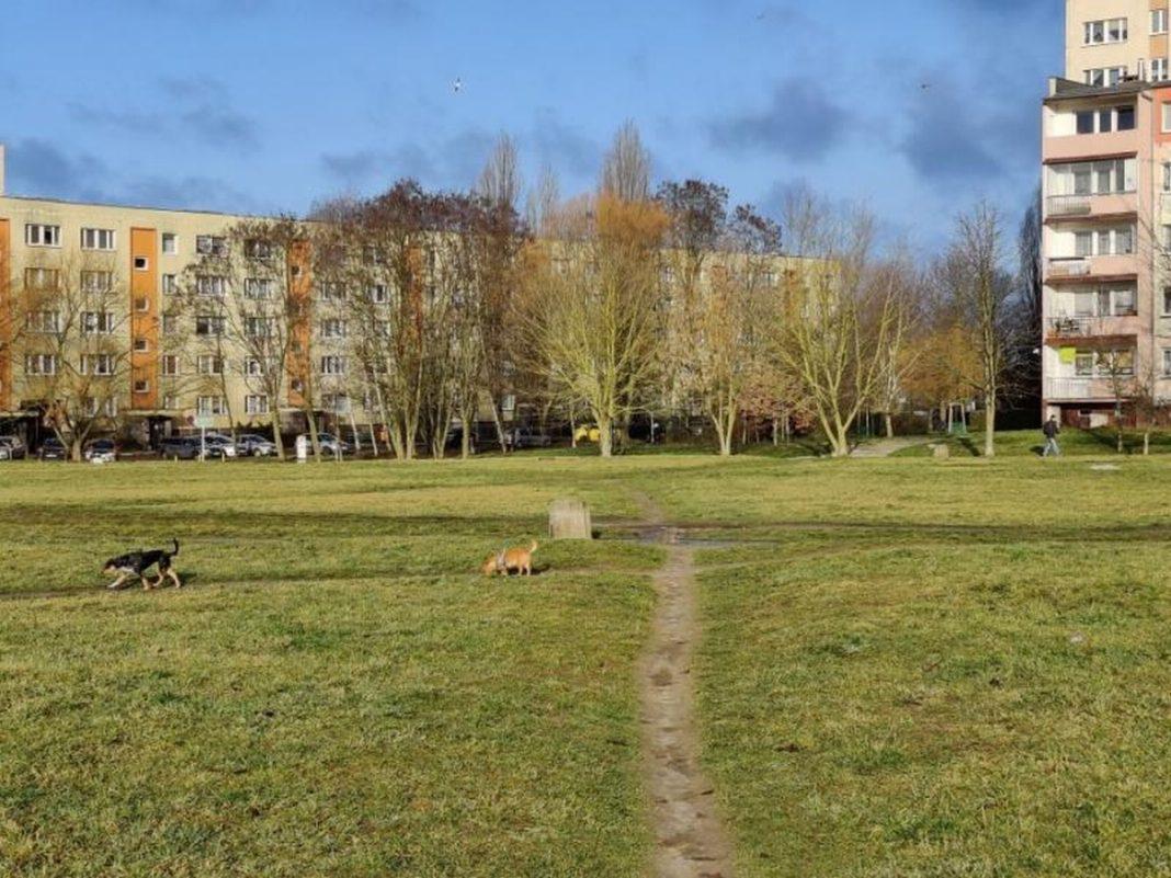park osiedle Zawadzkiego-Klonowica