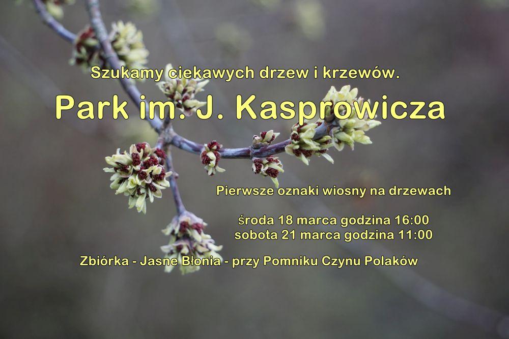 Szukamy ciekawych drzew i krzewów. Park im. J. Kasprowicza