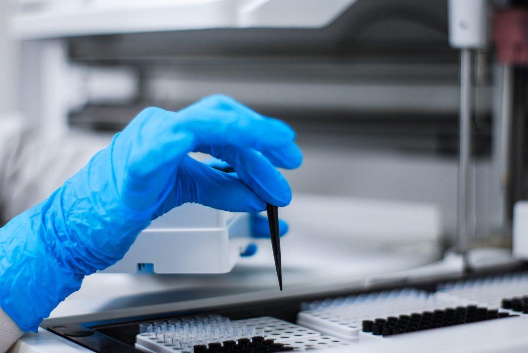 sanepid testy koronawirus