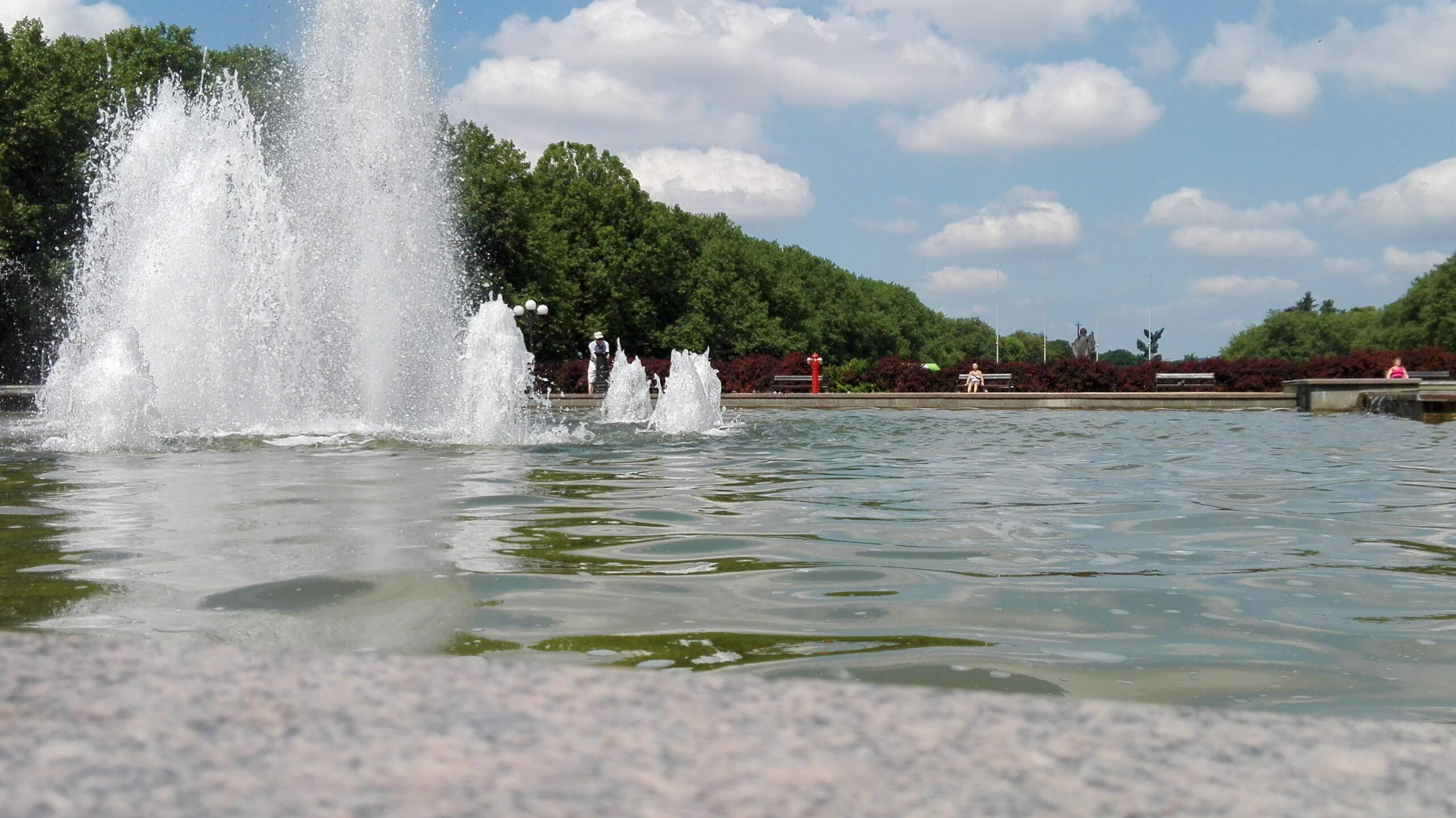 75 urodziny Szczecina- happening pt. Pomaluj Gryfusa