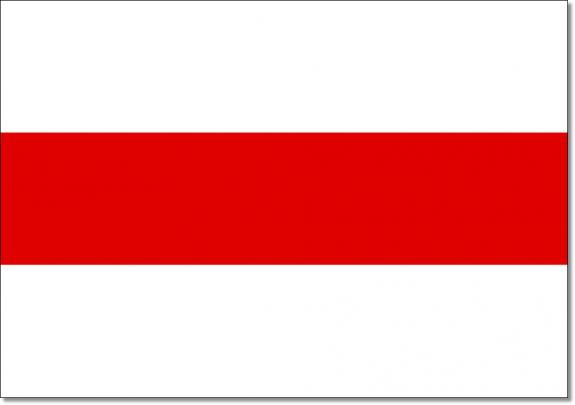 Pikieta Solidarni zBiałorusią wwalce odemokrację