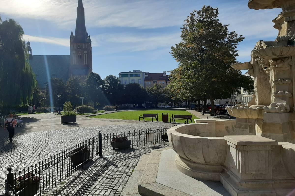 trawnik plac Orła Białego październik 2020