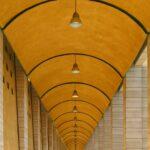 fot. Curve lines - Donatella Baronchelli