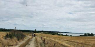 przetarg na 13 kilometrów drogi rowerowej wokół Zalewu Szczecińskiego