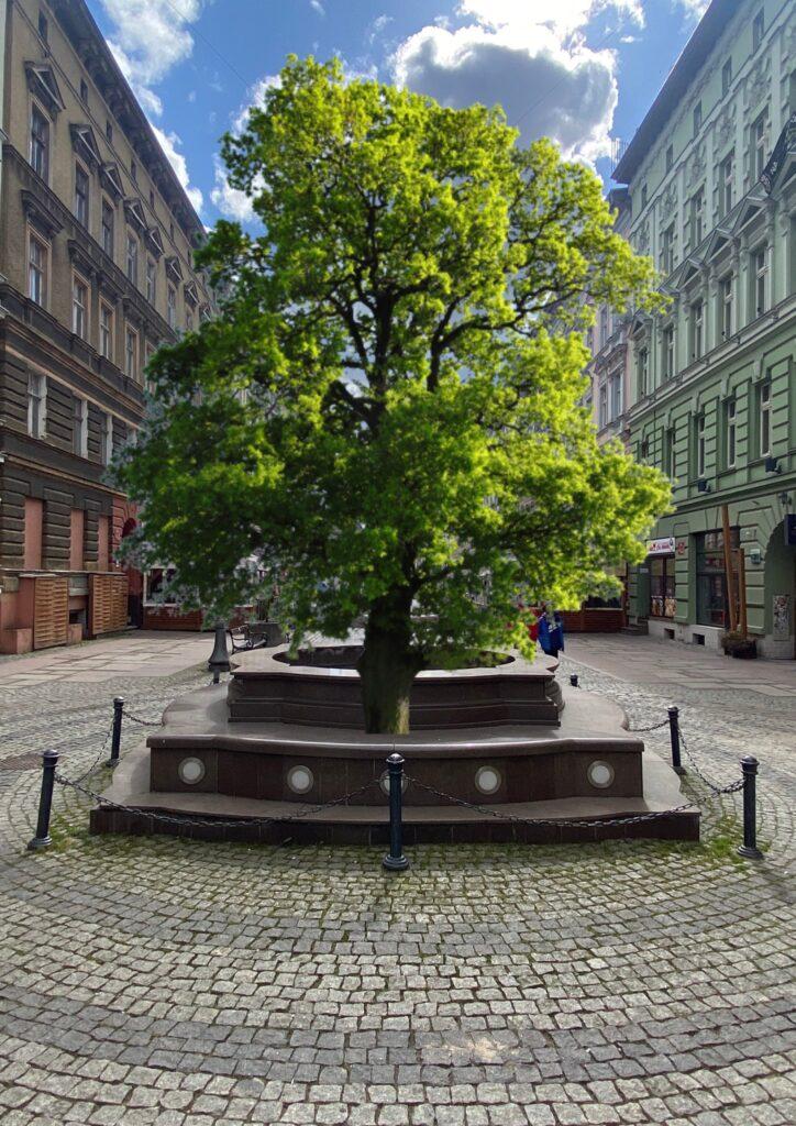 Nieczynna fontanna naDeptaku Bogusława Szczecin