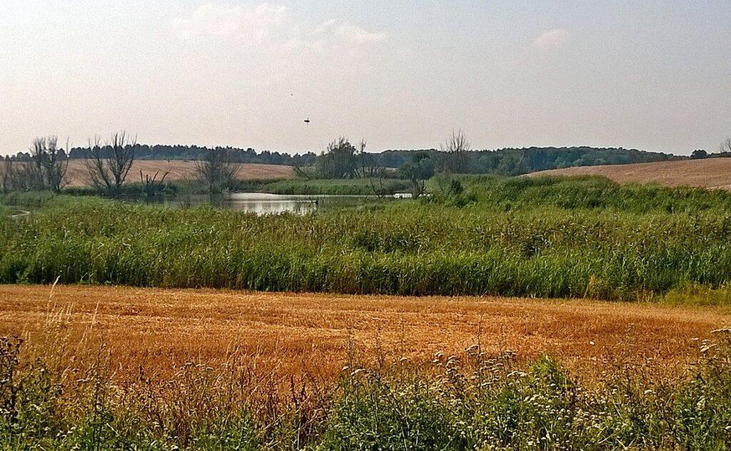 trasy-rowerowe-pomorze-zachodnie-zulawy-cedynskie