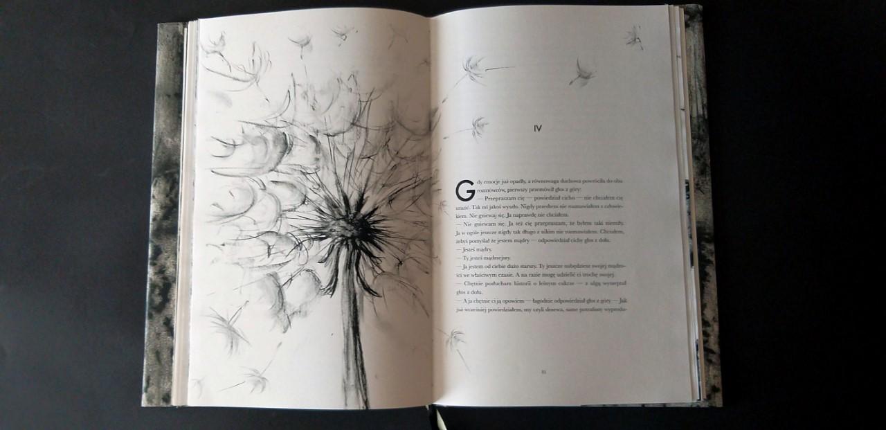 Książka dobrze zaprojektowana