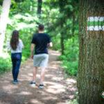 czas w las pomysł na wyprawę