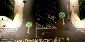 protest w sprawie wycinki drzew Szczecin
