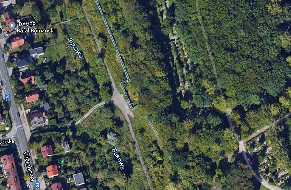 interpelacja w sprawie drzew na Gumieńcach